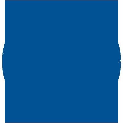 The Gulf - Vinyl Active Icon